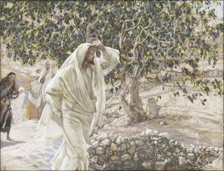 Tissot, The Accursed Fig Tree